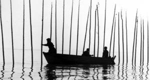 The Île-aux-Coudres Trilogy