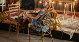 Holly Hobbie Comes to TV, image,