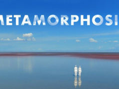 Metamorphosis - Coming Soon,