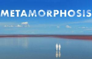 Metamorphosis - Coming Soon,