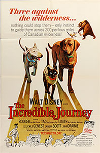 ;The Incredible Journey, 1963 movie poster - Northernstars Collection;
